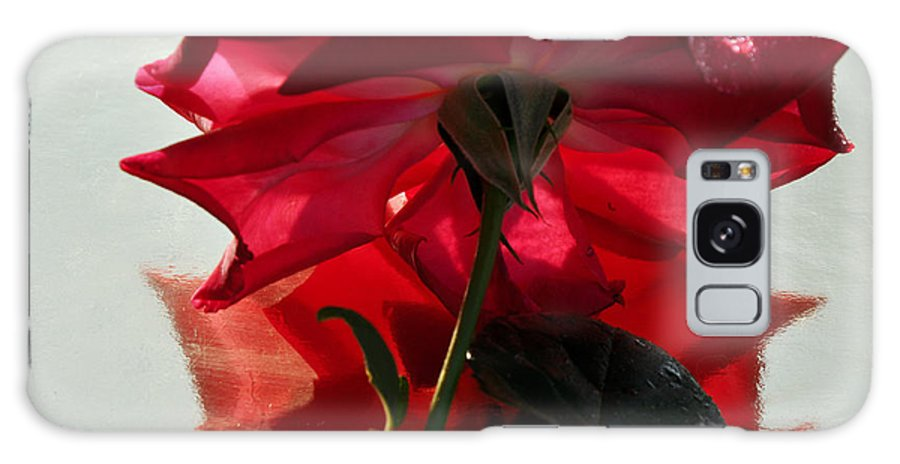 Red Rose Galaxy S8 Case featuring the photograph Red Rose by Damijana Cermelj