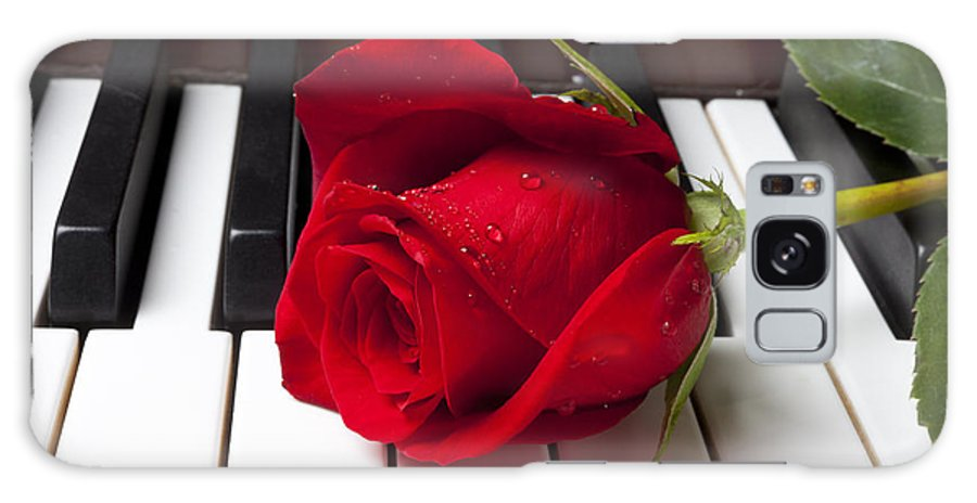 Red Rose Roses Galaxy S8 Case featuring the photograph Red Rose On Piano Keys by Garry Gay