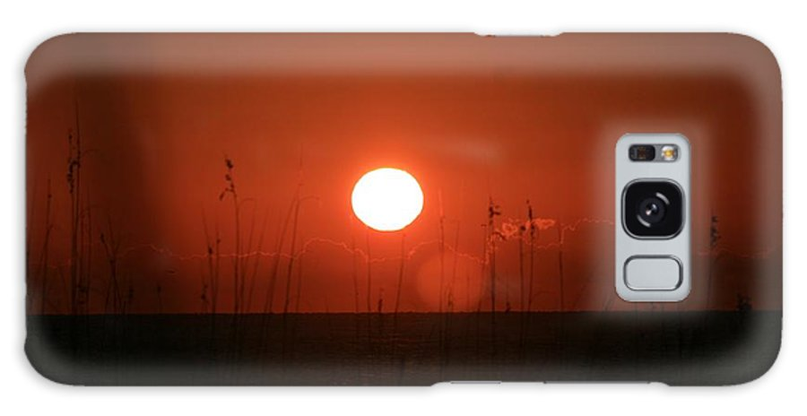 Sunset Galaxy S8 Case featuring the photograph Red Sunset And Grasses by Nadine Rippelmeyer