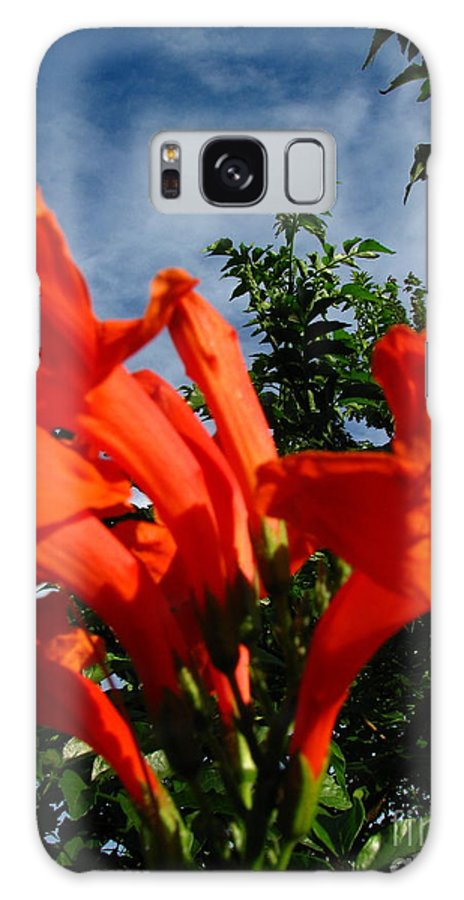 Patzer Galaxy S8 Case featuring the photograph Red Trumpeter by Greg Patzer