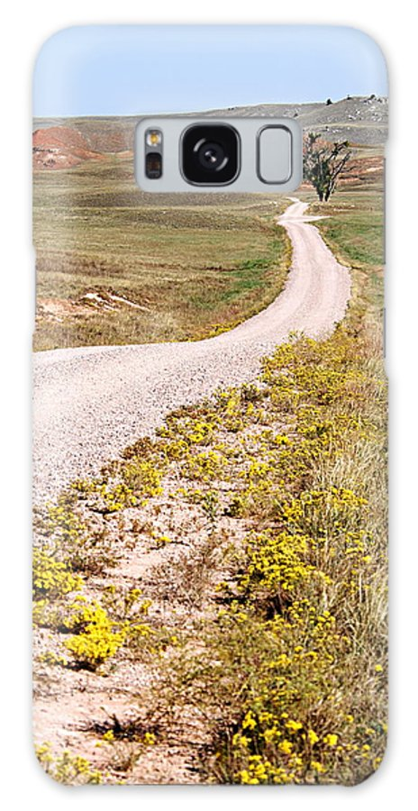 Red Valley Road Galaxy S8 Case featuring the photograph Red Valley Road by Larry Ricker