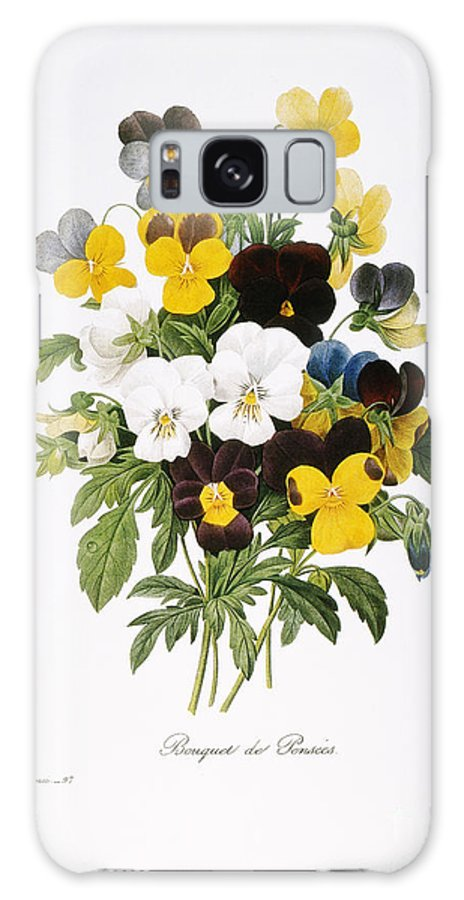 1833 Galaxy S8 Case featuring the photograph Redoute: Pansy, 1833 by Granger