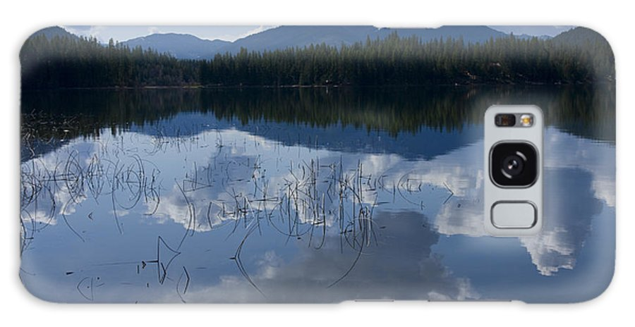 Reeds Galaxy Case featuring the photograph Reeds And Reflection by Idaho Scenic Images Linda Lantzy