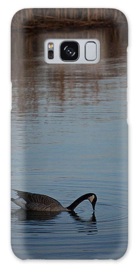 Water Galaxy S8 Case featuring the photograph Reflect by Donna Shahan