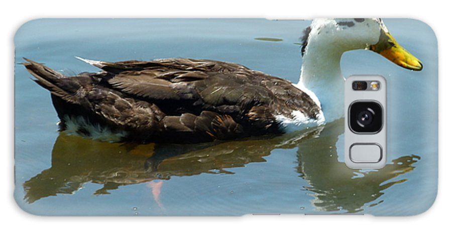 Duck Galaxy S8 Case featuring the photograph Reflecting Duck by Richard Bryce and Family