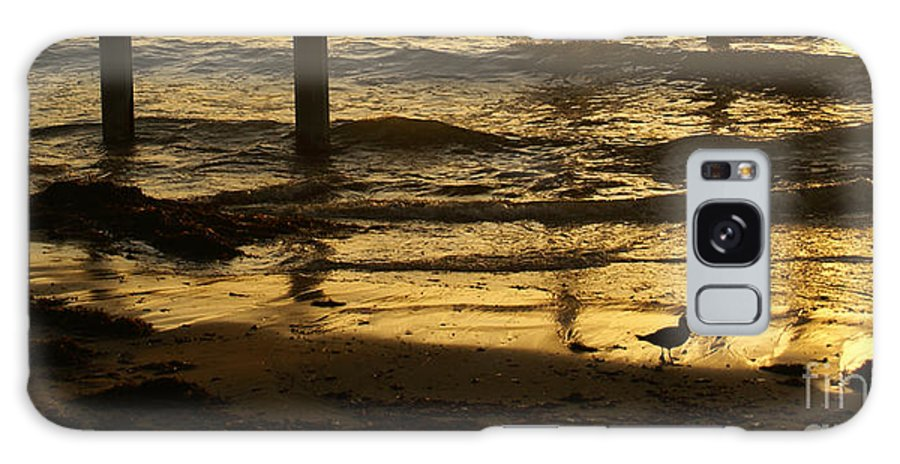 Ocean Galaxy S8 Case featuring the photograph Reflecting Gold by Linda Shafer