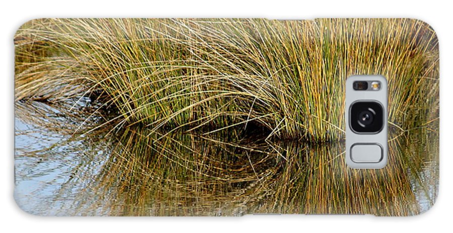 Reflections Galaxy S8 Case featuring the photograph Reflecting Reeds by Marty Koch