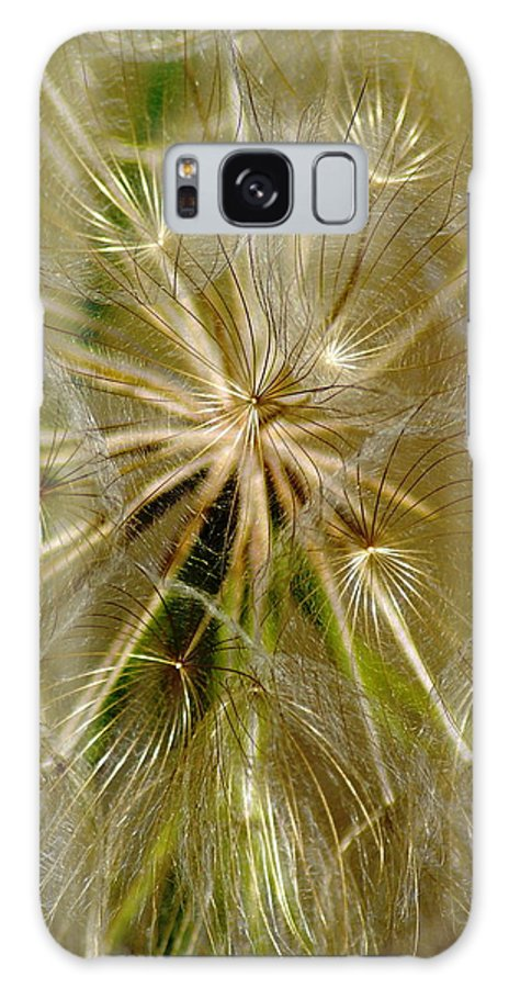 Flowers Galaxy S8 Case featuring the photograph Reflecting The Golden Sunshine Of Love by Ben Upham III