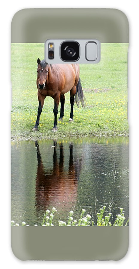 Horse Galaxy S8 Case featuring the photograph Reflecting Horse Near Water by Tiffany Vest