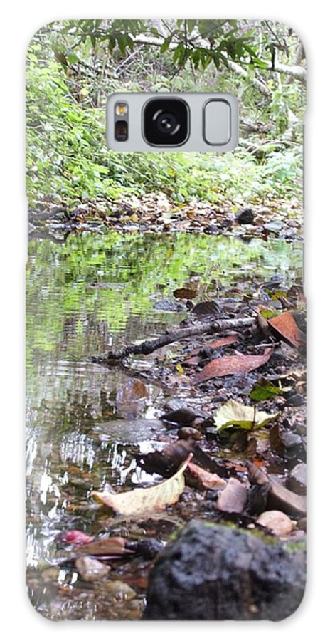 Woods Galaxy S8 Case featuring the photograph Reflection by Shari Chavira