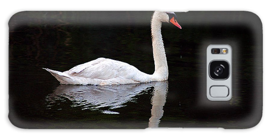 Clay Galaxy S8 Case featuring the photograph Reflections Of A Swimming Swan by Clayton Bruster