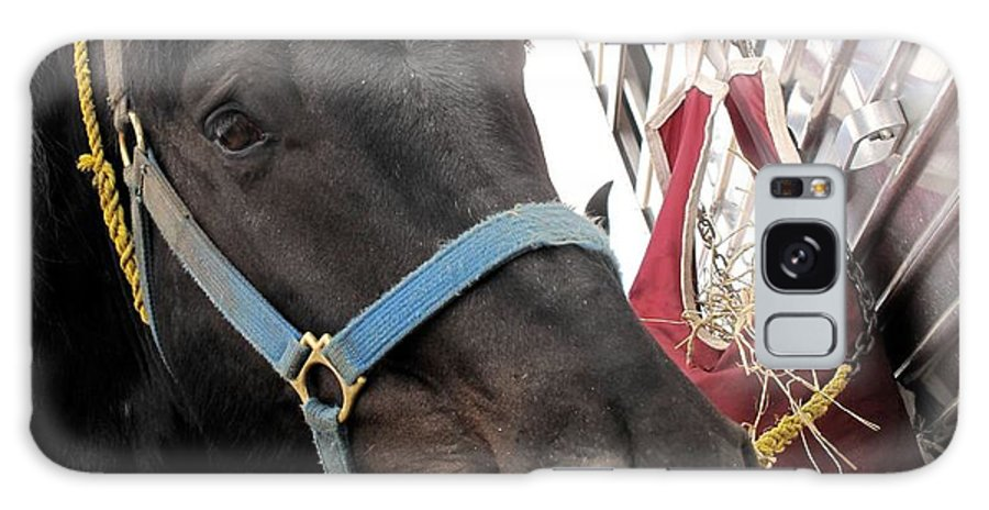 Horse Galaxy S8 Case featuring the photograph Reward For A Job Well Done by Ian MacDonald
