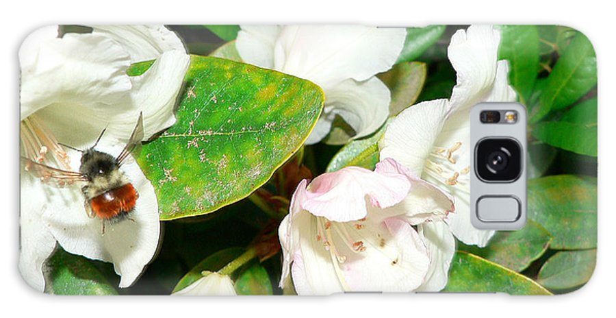 Bee Galaxy S8 Case featuring the photograph Rhododendron And Bee by Larry Keahey