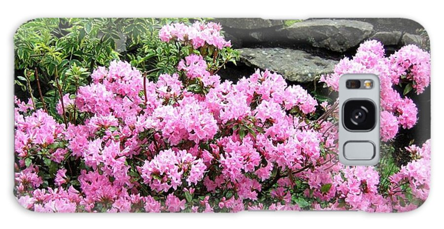 Rhododendrons Galaxy S8 Case featuring the photograph Rhododendrons by Will Borden