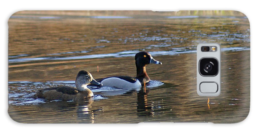 Duck Galaxy S8 Case featuring the photograph Ring Necked Duck by Heather Coen