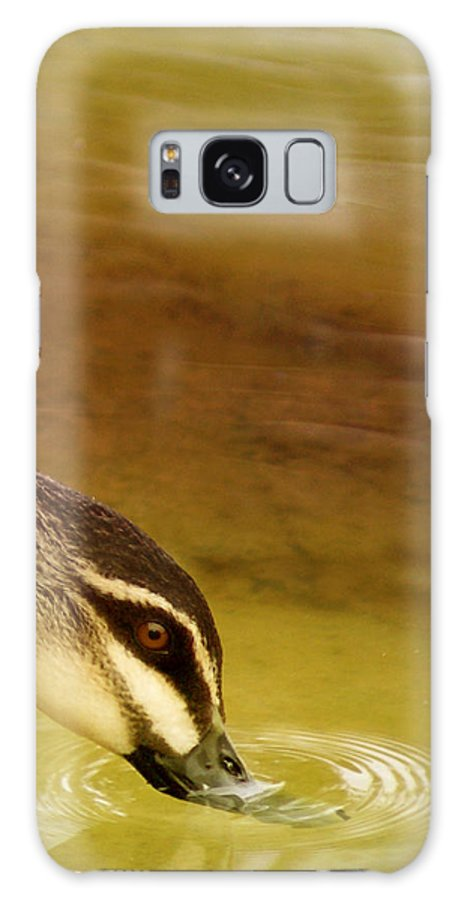 Animals Galaxy S8 Case featuring the photograph Ripples by Holly Kempe