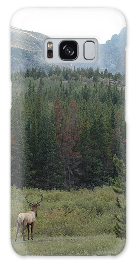 Elk Galaxy S8 Case featuring the photograph Rocky Mountain Elk by Kathy Schumann