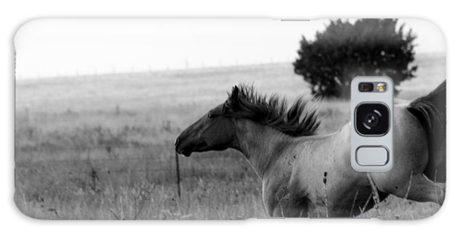Horse Galaxy S8 Case featuring the photograph Rogue by Elizabeth Hart