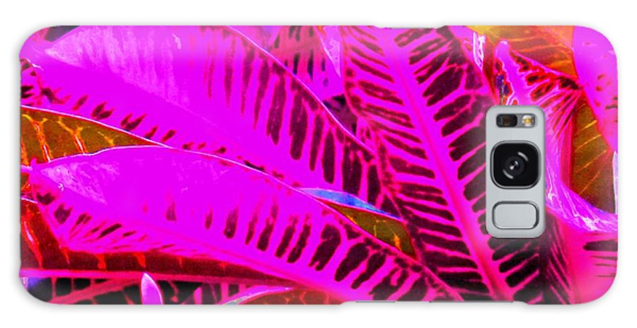 Pink Galaxy Case featuring the photograph Romney Pink by Ian MacDonald