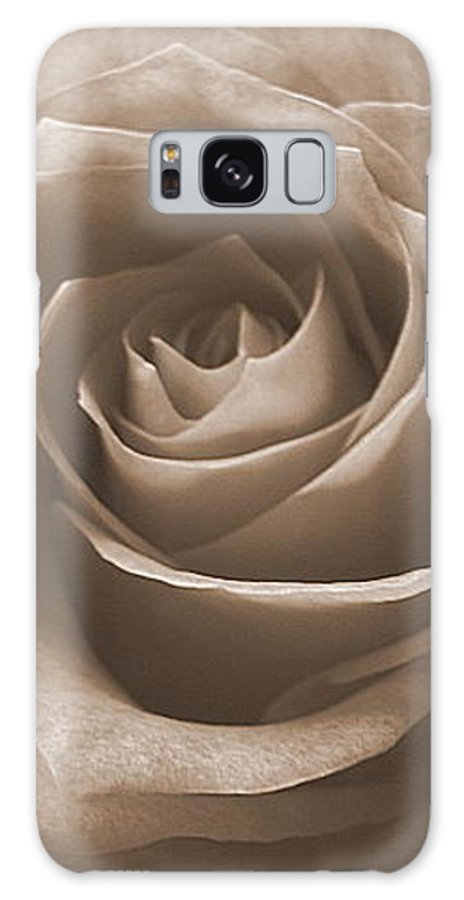 Rose Sepia Pedals Galaxy Case featuring the photograph Rose In Sepia by Luciana Seymour