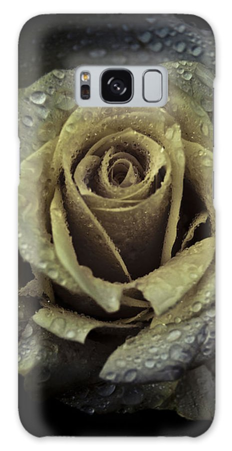 Rose Galaxy S8 Case featuring the photograph Rose Petals by Grebo Gray