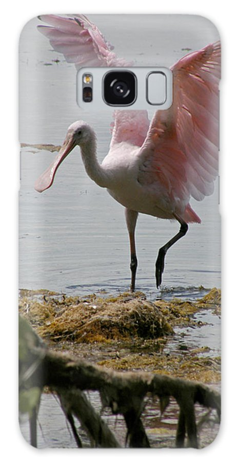 Roseate Spoonbill Galaxy S8 Case featuring the photograph Roseate Wave by Kimberly Mohlenhoff