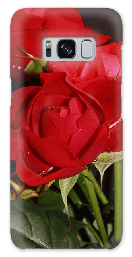Flowers Galaxy S8 Case featuring the photograph Roses Are Red by Martina Fagan