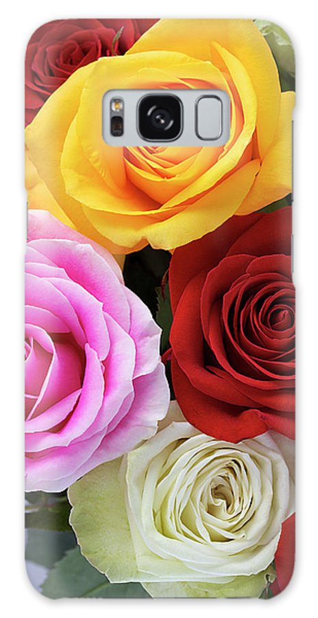 Roses Galaxy S8 Case featuring the photograph Roses by Phyllis Denton