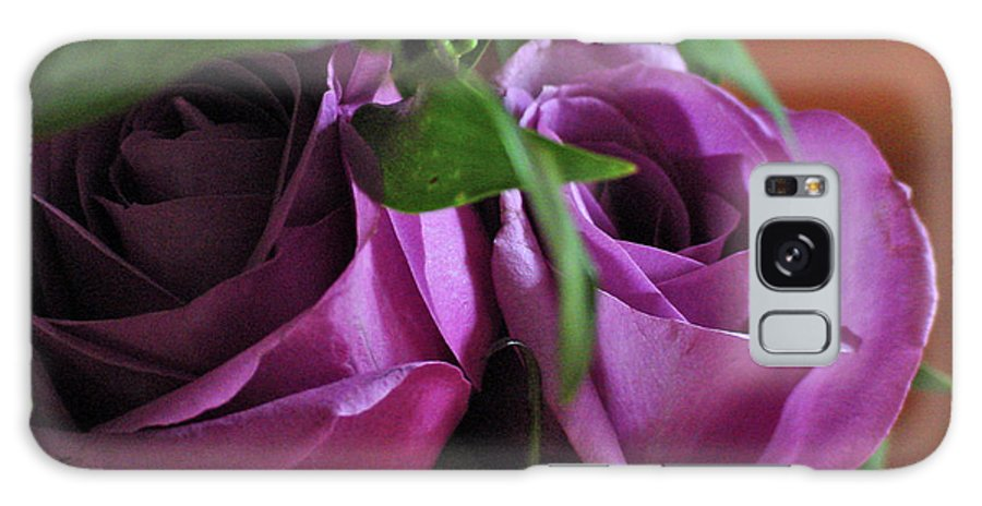 Green Galaxy S8 Case featuring the photograph Roses Up Close by Linda Seacord