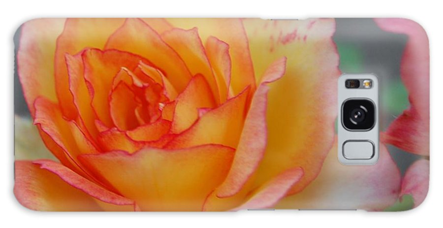Rose Galaxy S8 Case featuring the photograph Rosy Outlook by Jean Booth