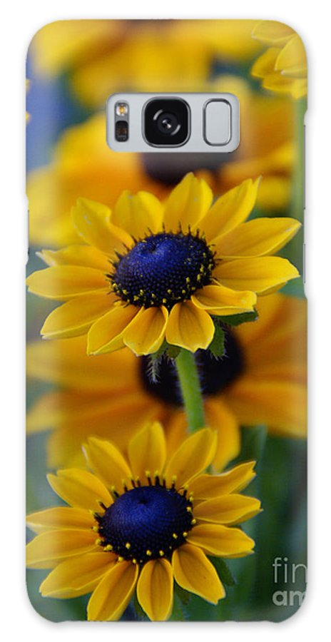 Yellow Galaxy S8 Case featuring the photograph Royal Blue by Linda Shafer