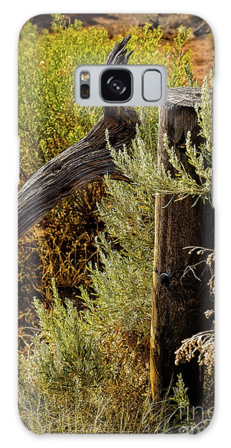 Jon Burch Galaxy S8 Case featuring the photograph Sage And Post by Jon Burch Photography