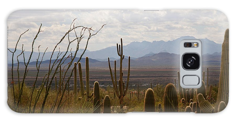 Saguaro Galaxy S8 Case featuring the photograph Saguaro National Park Az by Susanne Van Hulst