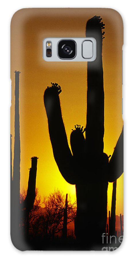Southwest Galaxy S8 Case featuring the photograph Saguaro Sunset by Sandra Bronstein