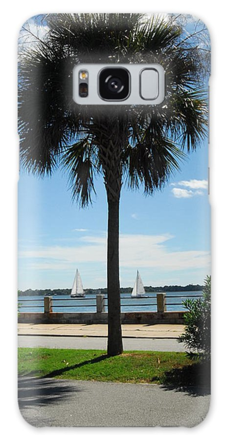 Sailboats Galaxy S8 Case featuring the photograph Sails And Palm by Cheryl Kostanesky