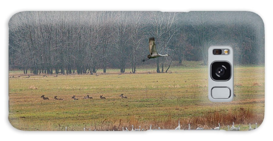 Birds Galaxy S8 Case featuring the photograph Sand Hill Crane Migration by David Arment