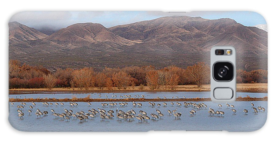 Sandhill Crane Galaxy Case featuring the photograph Sandhill Cranes Beneath The Mountains Of New Mexico by Max Allen