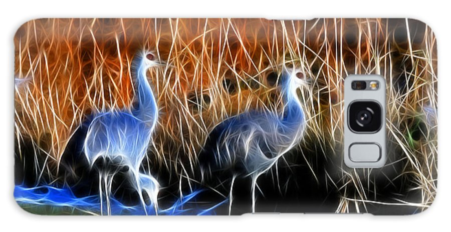 Snadhill Cranes Fractal At George C. Relfel Refuge Galaxy S8 Case featuring the photograph Sandhill Cranes Pair Fractal by Lawrence Christopher