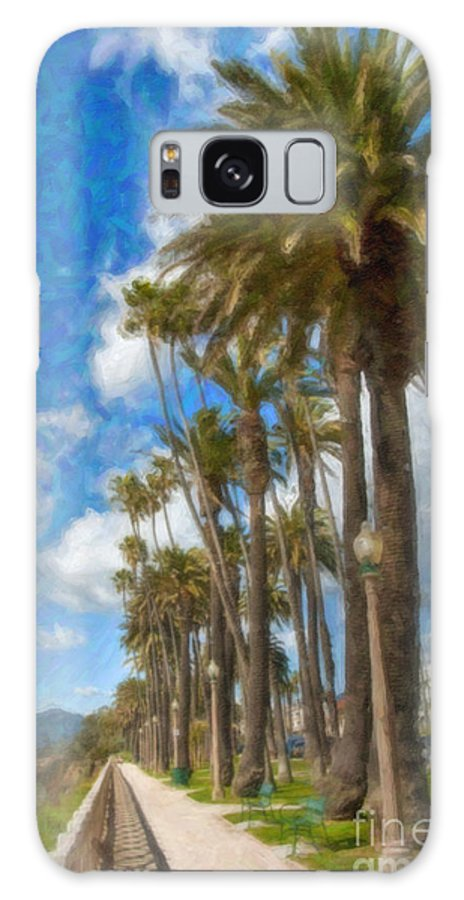 Santa Monica Ca Palisades Park Bluffs Galaxy S8 Case featuring the photograph Santa Monica Ca Palisades Park Bluffs by David Zanzinger