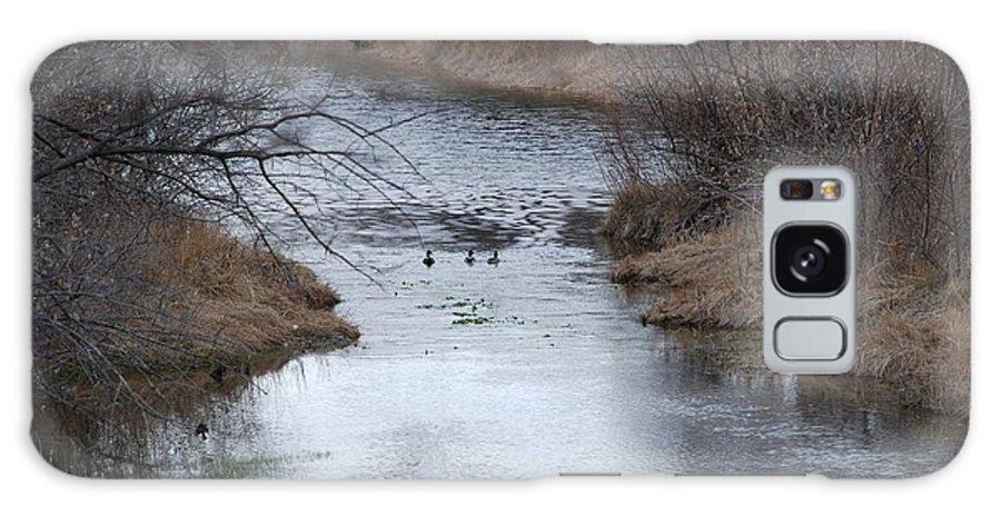 Birds Galaxy S8 Case featuring the photograph Sante Fe River by Rob Hans