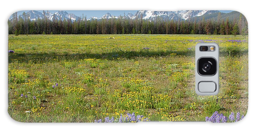 Wildflowers Galaxy S8 Case featuring the photograph Sawtooths And Wildflowers by Idaho Scenic Images Linda Lantzy