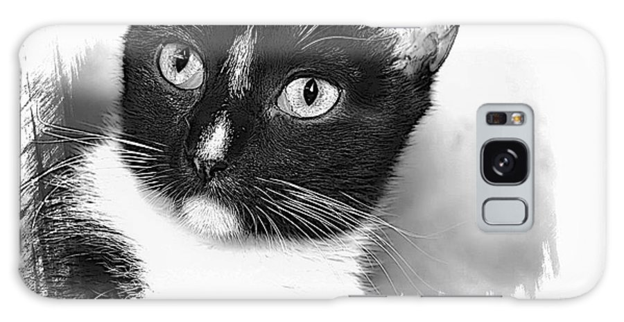 Cat Galaxy S8 Case featuring the photograph Scarlet by Joyce Baldassarre