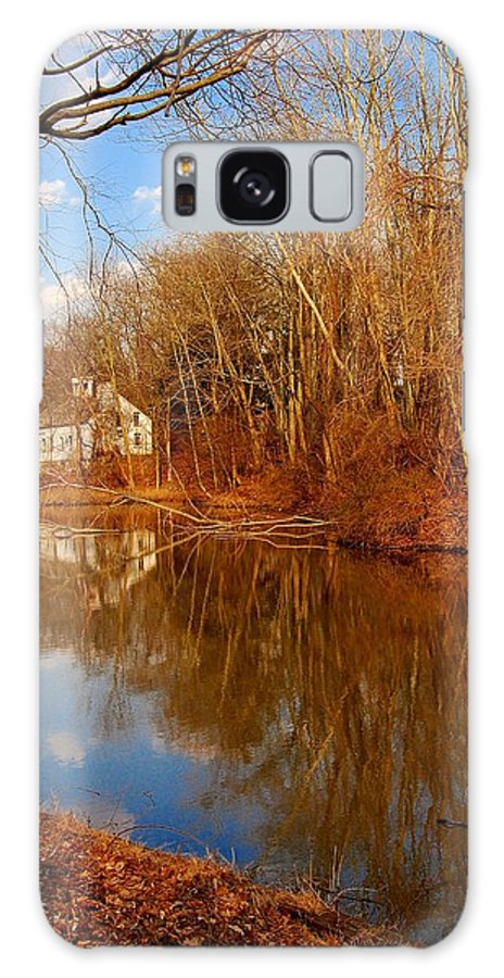 New Jersey Galaxy S8 Case featuring the photograph Scene In The Forest - Allaire State Park by Angie Tirado
