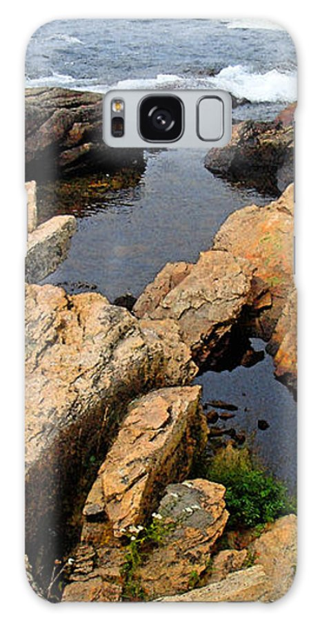 Landscape Galaxy Case featuring the photograph Scoodic Tidepool by Peter Muzyka