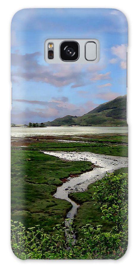 Valley Galaxy S8 Case featuring the photograph Scottish Highlands by Anthony Dezenzio