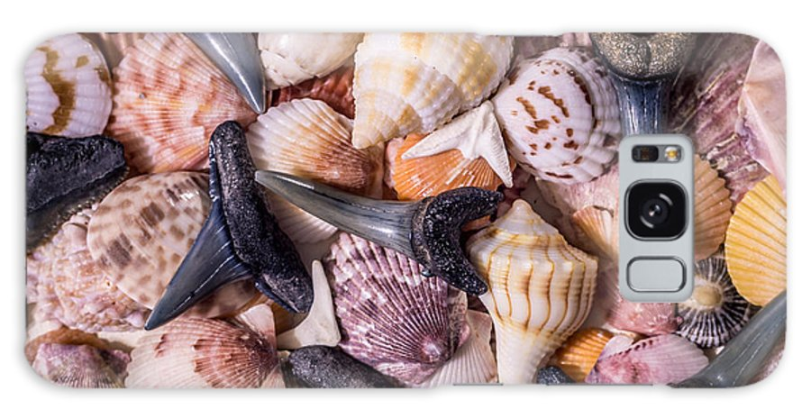Sea Shells Galaxy S8 Case featuring the photograph Sea Bones 22 by Robbie Lyle