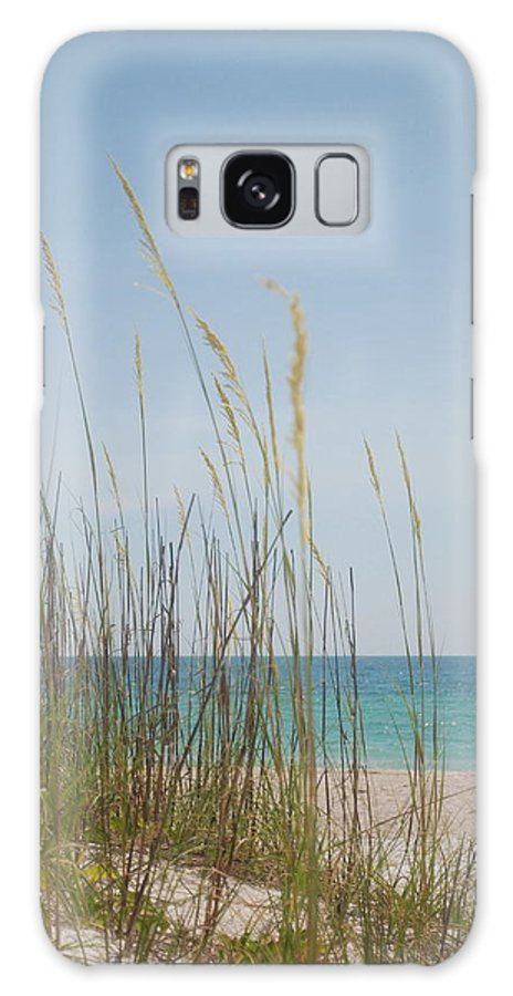 Sea Galaxy S8 Case featuring the photograph Sea Oats by Margaret Fortunato