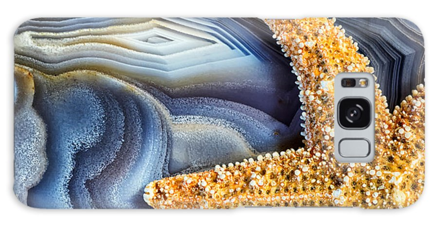 Nature Galaxy S8 Case featuring the photograph Sea Star Abstract by Kate Silvia