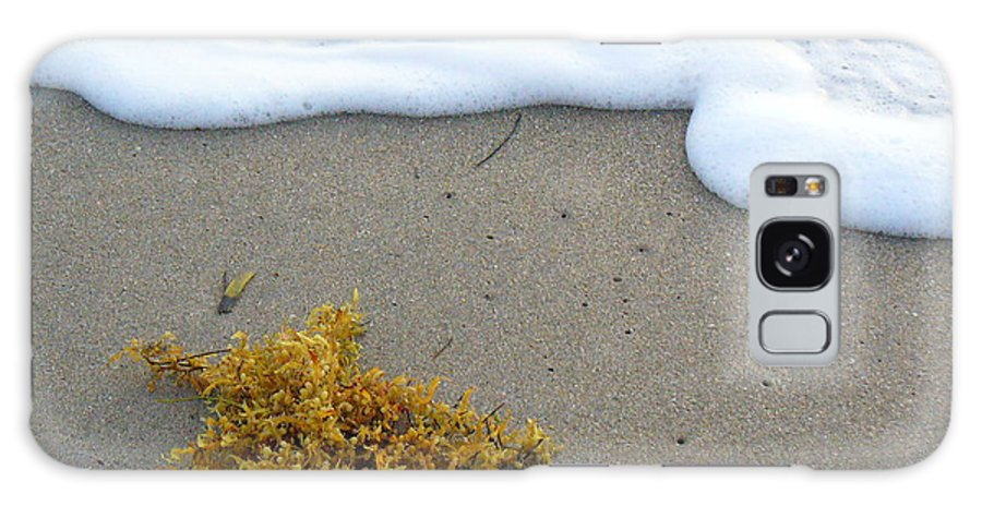Foam Galaxy Case featuring the photograph Seafoam And Seaweed by Peggy King