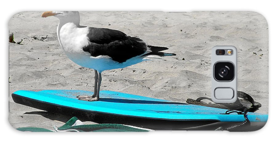 Bird Galaxy S8 Case featuring the photograph Seagull On A Surfboard by Christine Till